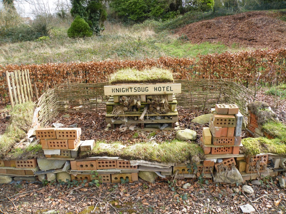 with our own bug hotel!